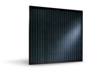 Trienergia square PV modules